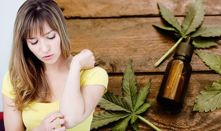 Get Relief from Ailments and Other Mental Conditions with CBD Products